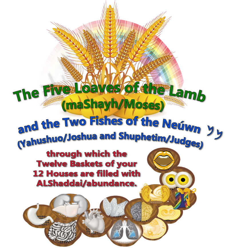The Five Loaves and Two Fishes through which your 12 baskets of your 12 houses are filled with abundance